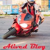 Alived Blog