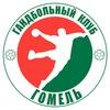 """Гандбольный Клуб """"Гомель"""""""