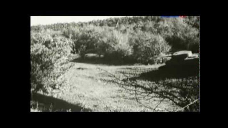 Первые четыре часа Великой Отечественной войны
