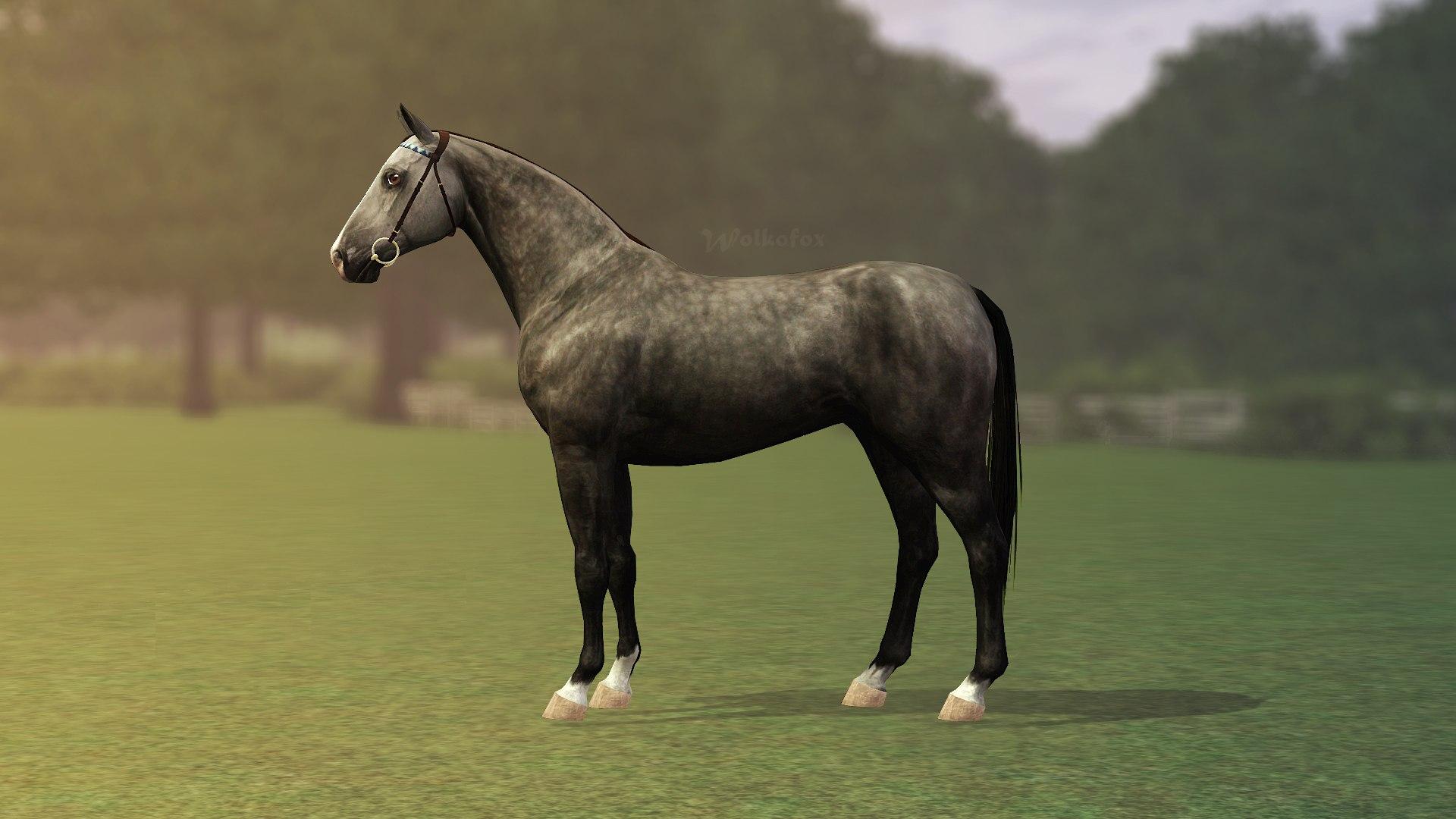 Регистрация лошадей в RHF 2 - Страница 4 SPHQIQCRAkw