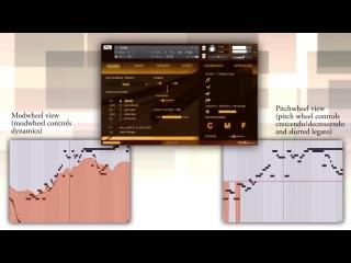 Trio Broz: Solo Cello Legato Improvisation