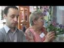 ДФ.Размножение сенполий(пеньки и цветоносы)19.05.2012
