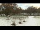 Синоптики: новогодняя ночь в центральных районах России будет морозной - Первый канал