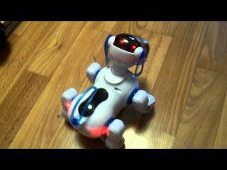 Китайская робот собака