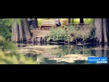 Doniyor Bekturdiyev - Qopqoro (Official HD Video) - YouTube_0_1457819978773