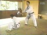Major Schools of Okinawa Karate - Uechi-ryu, Goju-ryu, Shorin-ryu Vol.2