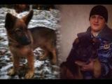 Россия подарила Франции щенка