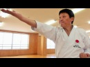 強烈空手!小林邦雄師範(JKA) Powerful Karate ! Kunio Kobayashi Shihan