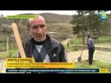Армянские безработные получили второй шанс