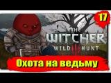 Путешествие по Ведьмак 3: Дикая Охота (Сложность - На смерть!): Серия №17 - Охота на ведьм