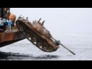 Пьяные рыбаки на рыбалке, приколы