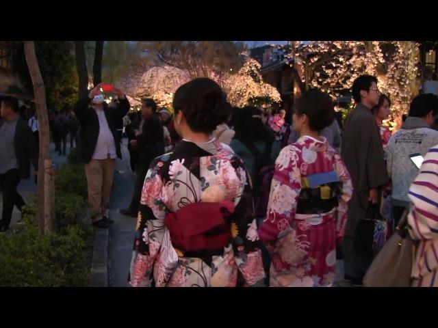 京都観光 Kyoto Sightseeing 京都旅遊 교토 관광 เกียวโตการชมทิว36