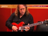 Warren Haynes plays Gibson Signature ES-335  Soulshine  The Allman Brothers Band