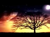 Любовь через вселенную... ( 270p )