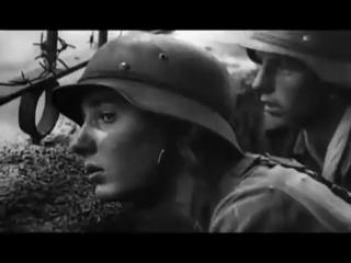 Sleipnir - unbekannter soldat (stalingrad)