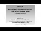 Сергей Терёшкин: награждение и доклад
