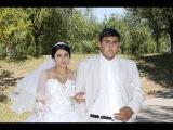 Цыганская свадьба. Петр и Явда. 12 серия