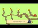 Beasts Battle 2 (dev ep4) - Dialogs (Corona SDK)