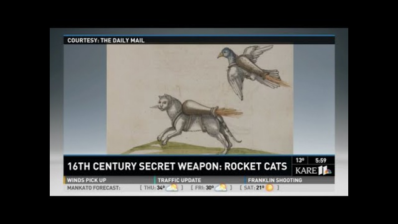 'Rocket Cat' Weaponry Plans Found In 16th-Century War Manual| History Porn