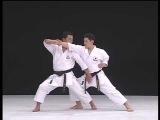 seipai _ karate kata &amp bunkai