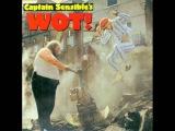 Captain Sensible - Wot (Rework Retro Remix)