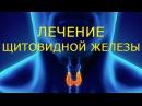 ✔Как быстро вылечить щитовидку. Лечение щитовидной железы с Биомедис М. Средств...