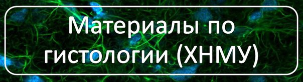 Базовый Учебник По Гистологии Афанасьева 2003 Год