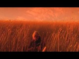 Xavier Rudd - Shelter (official film clip)