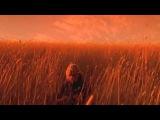 Xavier Rudd - Shelter (official film clip)