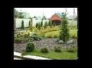 Пример озеленения садового участка