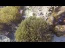 Дайвинг на острове Рача Яй, залив Баток / Diving near Racha Yai Island, Batok Bay