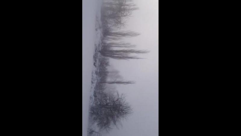 Тараз. бурное)