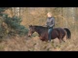 Это любовь лошади к человеку ))))