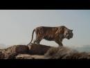 Книга джунглей. ТВ-ролик №2