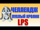 Челлендж ПУХЛЫЙ КРОЛИК LPS