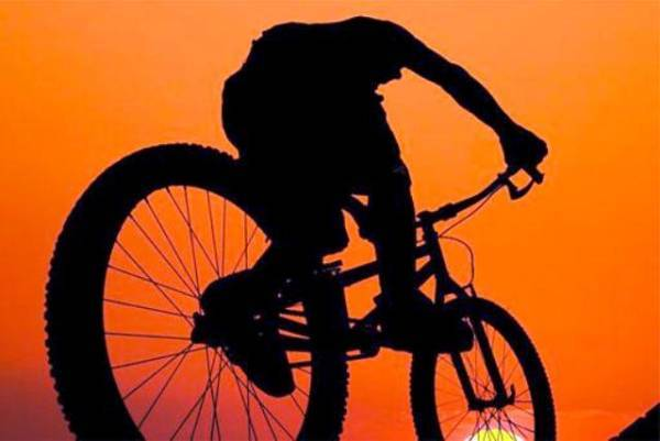В Нерюнгри парень сломал украденный велосипед и бросил в кустах