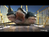 720pHD 3 Headed Shark Attack VFX By Steve Clarke &amp Paul Knott