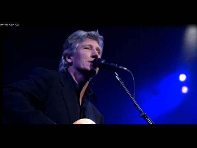 Roger Waters - Pigs on the Wing / Dogs
