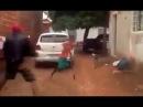 One Leg Capoeirista