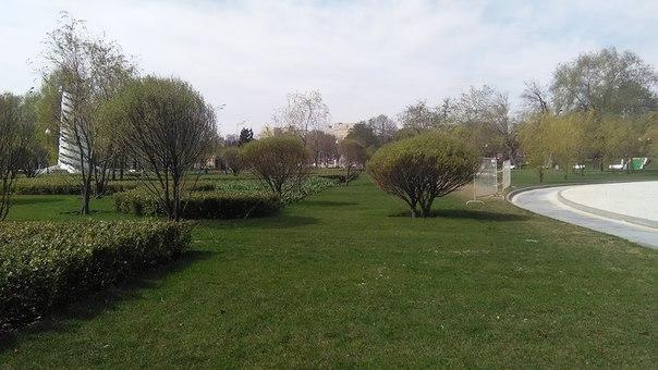 Сады, разделяющие всё в Парке Горького — отдельная история. Всё аккуратно подстрижено и выверено. Нет мусора.
