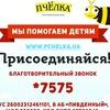 """Благотворительный фонд """"Пчёлка"""""""