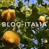 Блог Италия - Шаг навстречу мечте