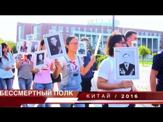 Бессмертный Полк - Анатолий Киреев 07.12.16