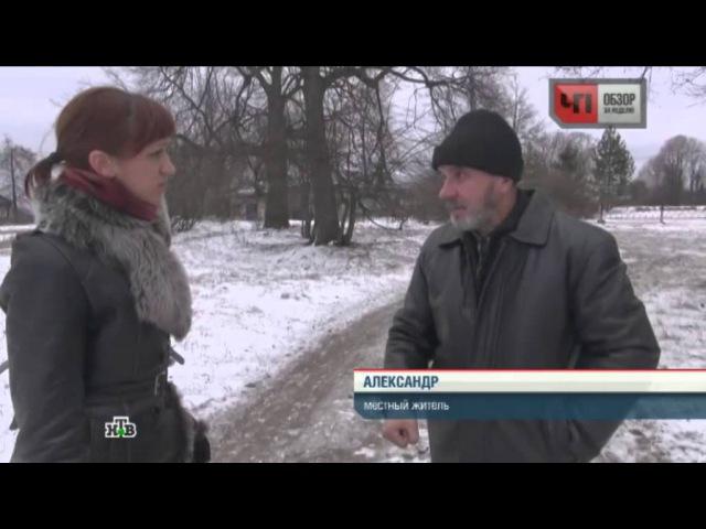 В религиозном приюте под Ярославлем детей превратили в рабов: одна из воспитанниц забита насмерть