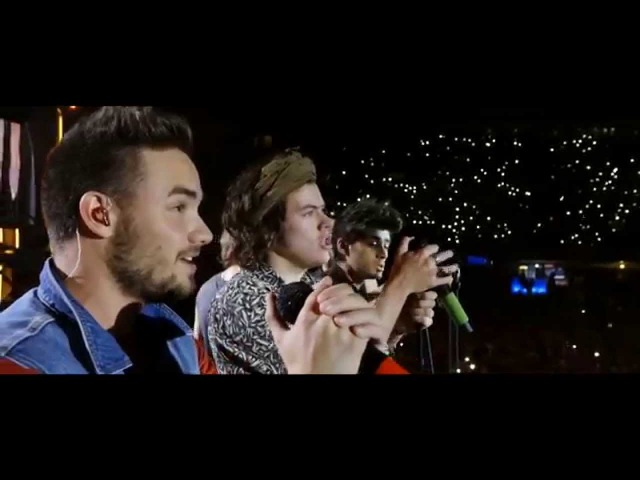 WHERE WE ARE ONE DIRECTION Milan San Siro 28 06 14 1 YEAR Tribute