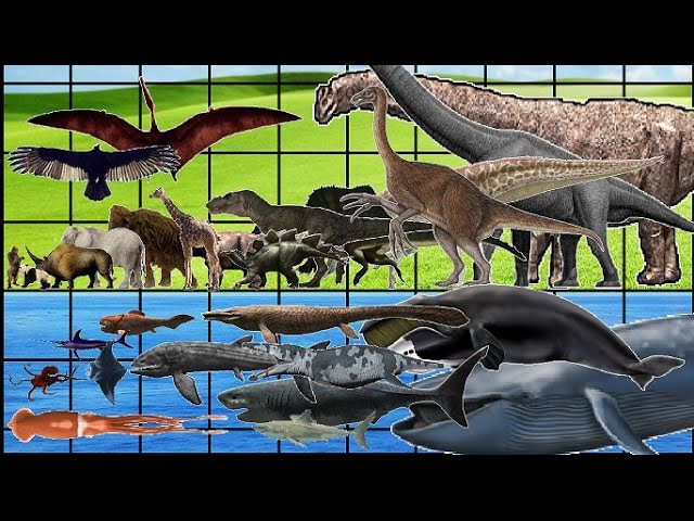 ALL Animals, Dinosaurs Sea Monsters SIZE COMPARISON