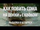 Ловля сома на квок и донку. Рыбалка в Белоруссии на сома на реке Припять