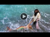 Pirate and a Mermaid Melissa A Real Life Mermaid - Video Dailymotion