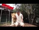 Человек и дикие животные необычная дружба видео