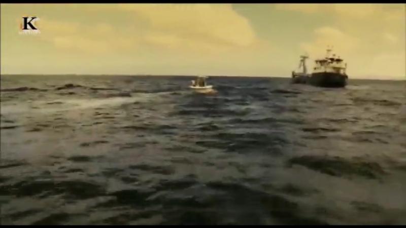 Акульи пастухи Поймать убийцу 1 я серия 2012